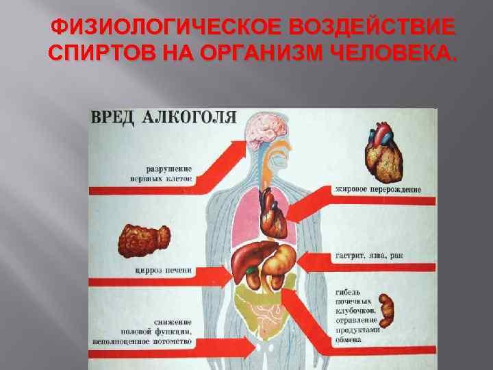 Физиологическое действие этанола на организм человека