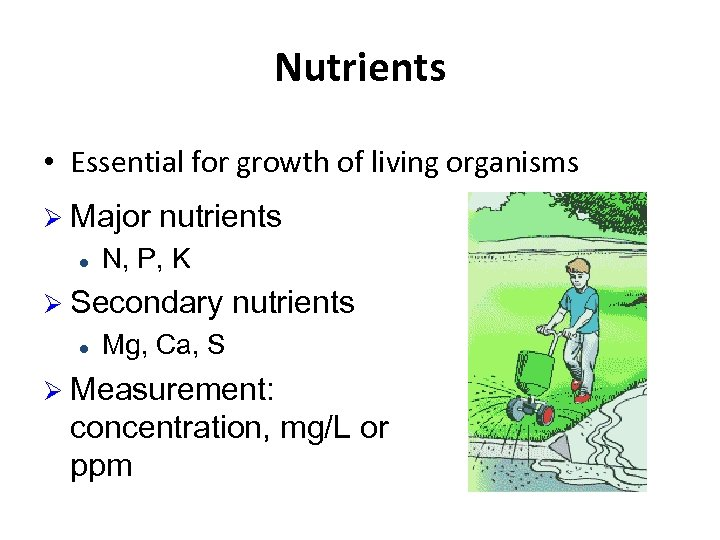 Nutrients • Essential for growth of living organisms Ø Major l nutrients N, P,