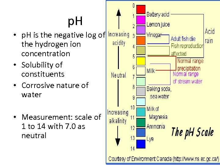 p. H • p. H is the negative log of the hydrogen ion concentration