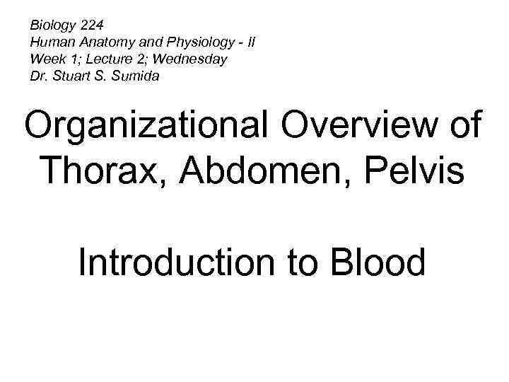 Biology 224 Human Anatomy and Physiology — II