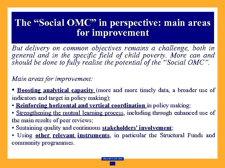 "The ""Social OMC"" in perspective: main areas for improvement But delivery on common objectives"