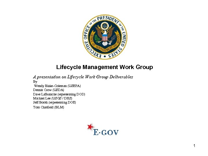 Lifecycle Management Work Group A presentation on Lifecycle Work Group Deliverables By Wendy Blake-Coleman