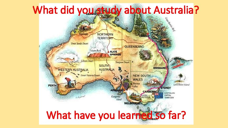 What did you study about Australia? What have you learned so far?