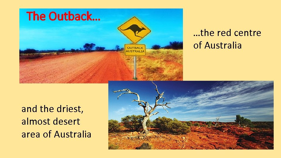The Outback… …the red centre of Australia and the driest, almost desert area of
