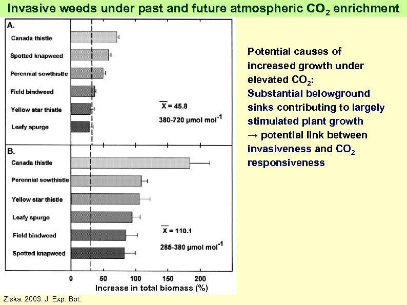 Invasive weeds under past and future atmospheric CO 2 enrichment Potential causes of increased