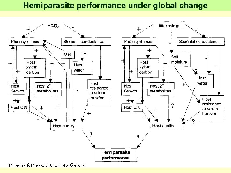 Hemiparasite performance under global change Phoenix & Press. 2005. Folia Geobot.