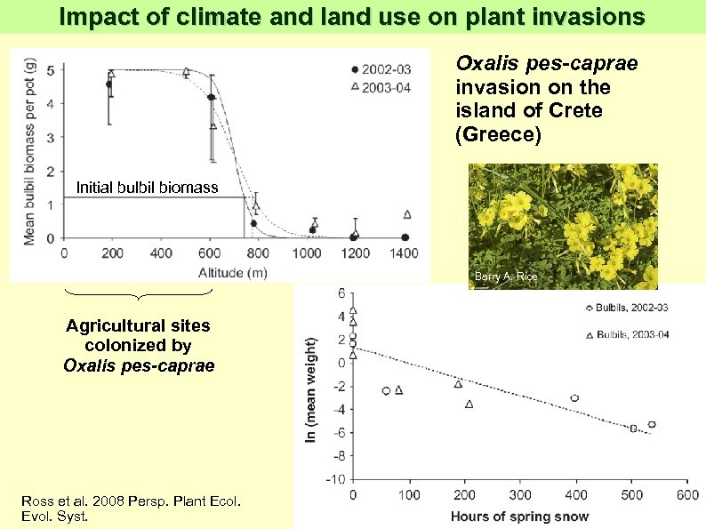 Impact of climate and land use on plant invasions Oxalis pes-caprae invasion on the