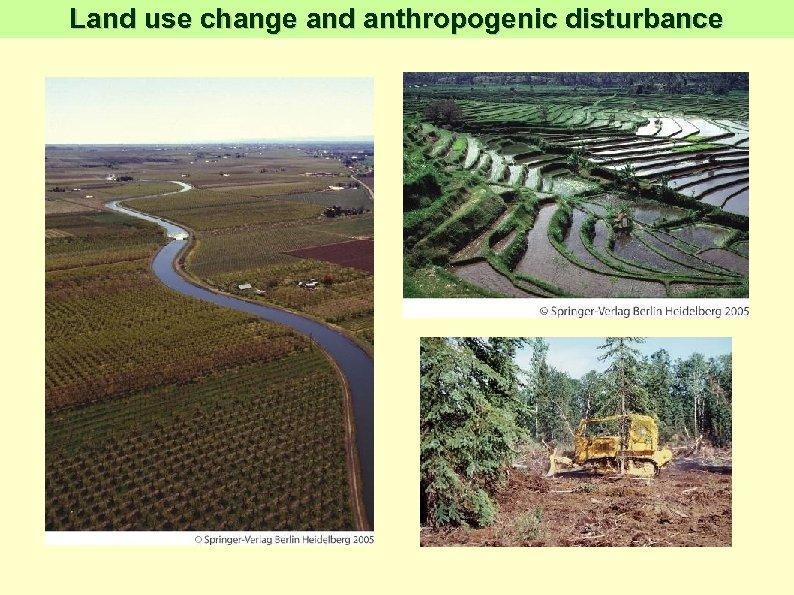 Land use change and anthropogenic disturbance