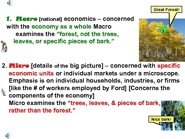 Great Forest! 1. Macro [national] economics – concerned with the economy as a whole