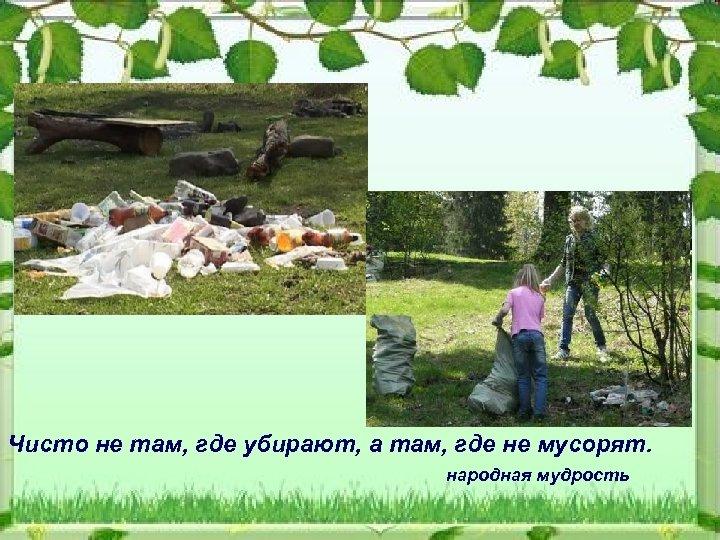Чисто не там, где убирают, а там, где не мусорят. народная мудрость
