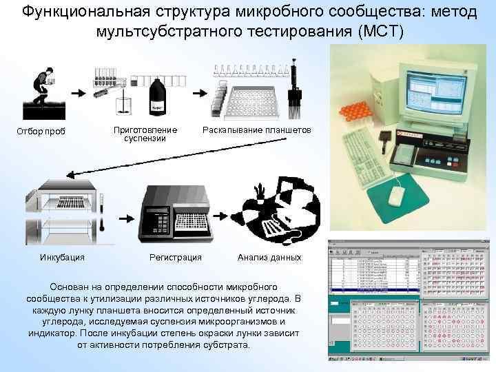 Функциональная структура микробного сообщества: метод мультсубстратного тестирования (МСТ) Отбор проб Инкубация Приготовление суспензии Регистрация