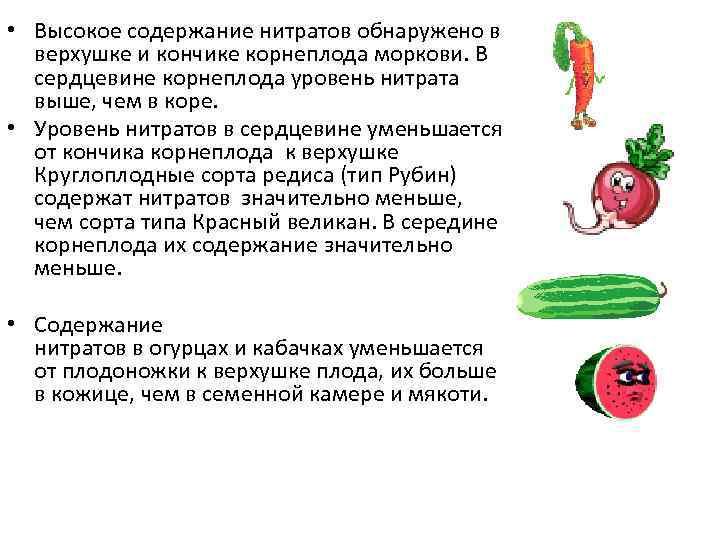 • Высокое содержание нитратов обнаружено в верхушке и кончике корнеплода моркови. В сердцевине