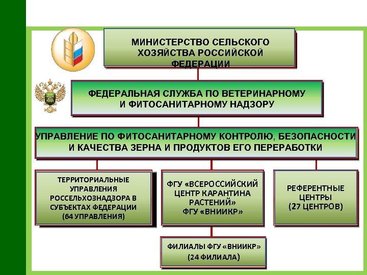 МИНИСТЕРСТВО СЕЛЬСКОГО ХОЗЯЙСТВА РОССИЙСКОЙ ФЕДЕРАЦИИ ФЕДЕРАЛЬНАЯ СЛУЖБА ПО ВЕТЕРИНАРНОМУ И ФИТОСАНИТАРНОМУ НАДЗОРУ УПРАВЛЕНИЕ ПО