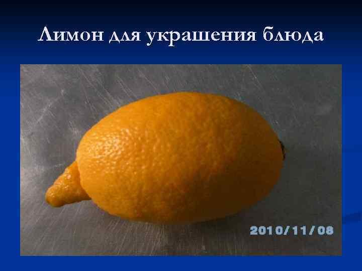 Лимон для украшения блюда