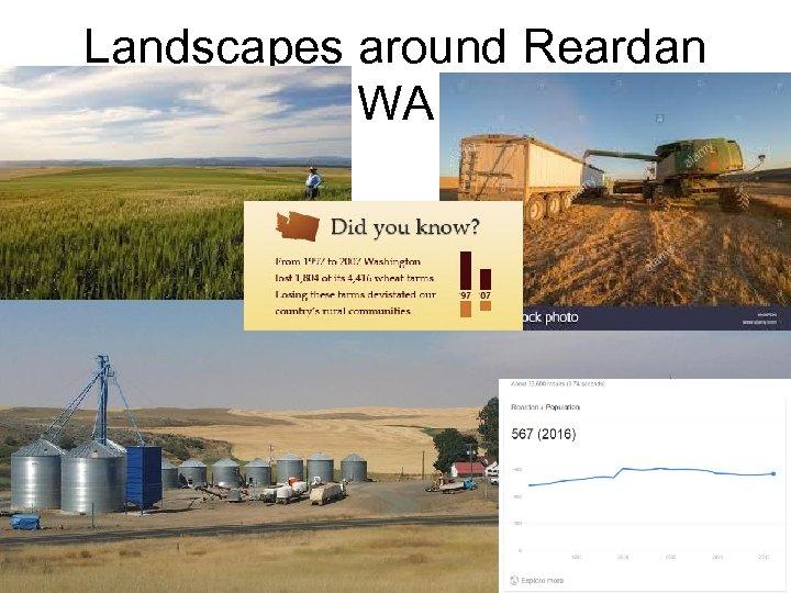 Landscapes around Reardan WA