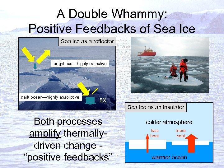 A Double Whammy: Positive Feedbacks of Sea Ice Sea ice as a reflector bright