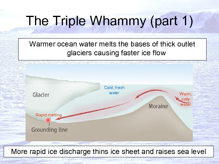 The Triple Whammy (part 1) Warmer ocean water melts the bases of thick outlet
