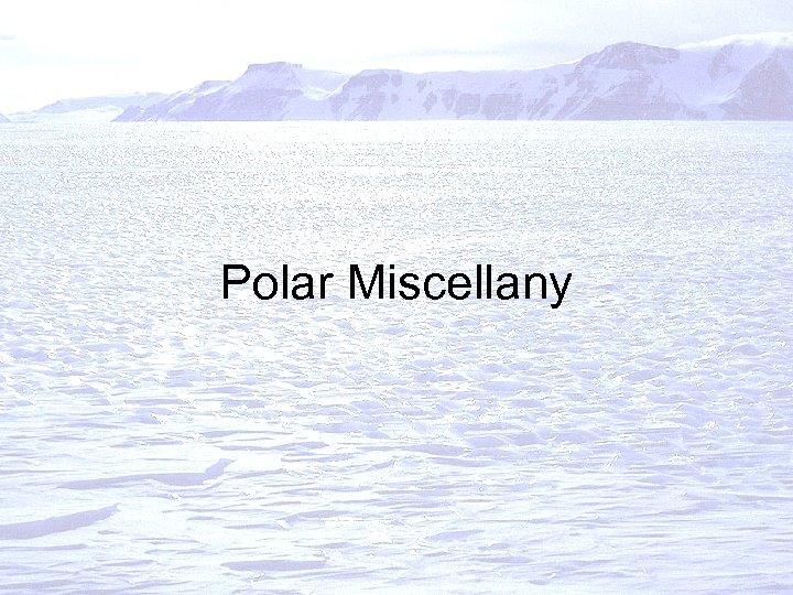 Polar Miscellany