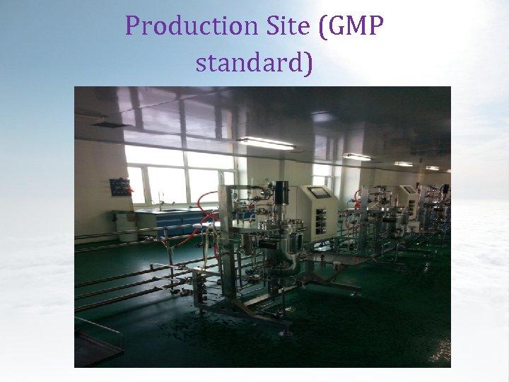 Production Site (GMP standard)