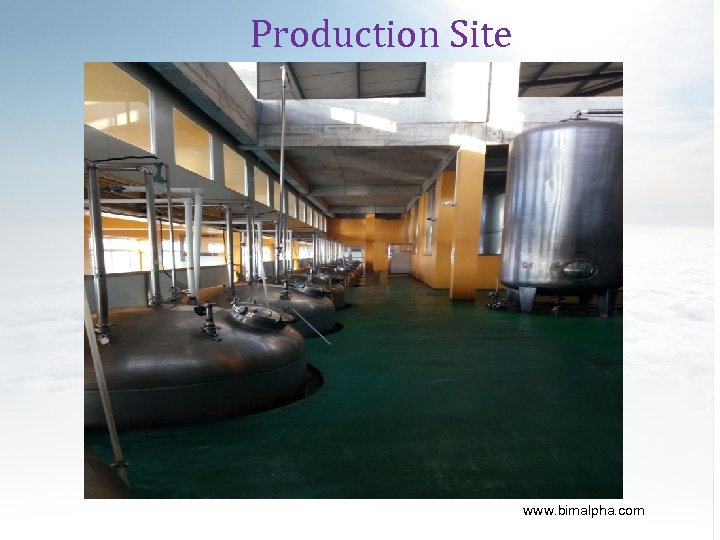 Production Site www. bimalpha. com