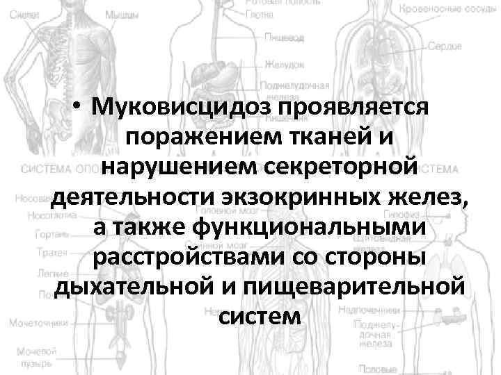 • Муковисцидоз проявляется поражением тканей и нарушением секреторной деятельности экзокринных желез, а также