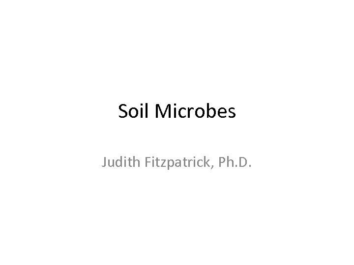 Soil Microbes Judith Fitzpatrick, Ph. D.