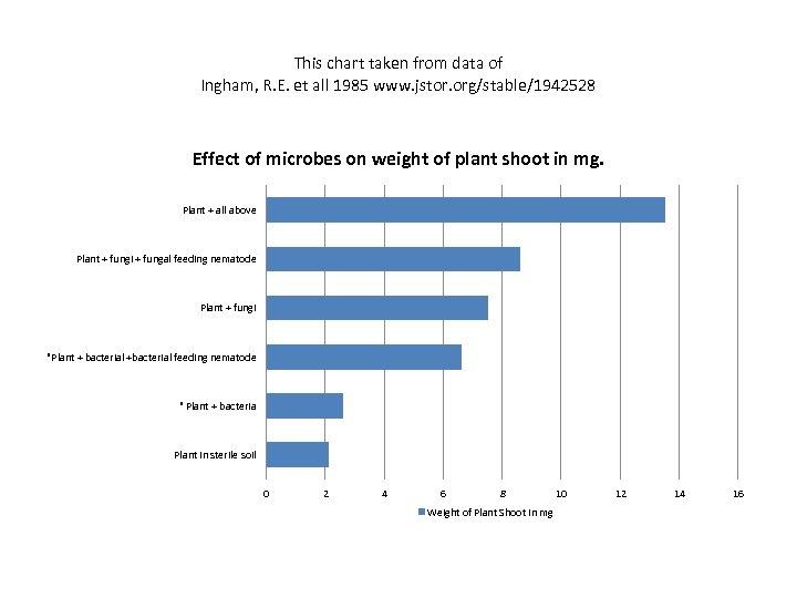 This chart taken from data of Ingham, R. E. et all 1985 www. jstor.