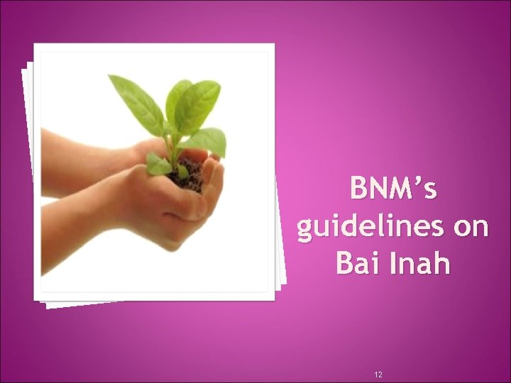BNM's guidelines on Bai Inah 12