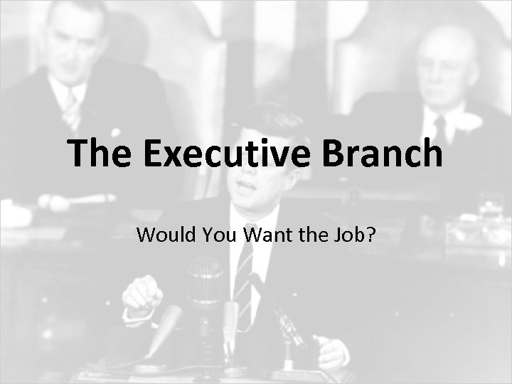 The Executive Branch Would You Want the Job?