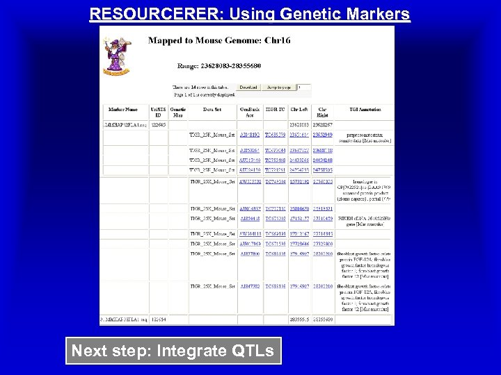 RESOURCERER: Using Genetic Markers Next step: Integrate QTLs