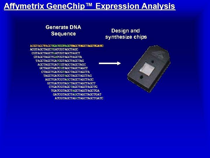 Affymetrix Gene. Chip™ Expression Analysis Generate DNA Sequence ACGTAGCTAGCTGATCGTAGCTAGCTAGCTAGCTGATC ACGTAGCTGATCGTAGCTAGCTGATC ACGTAGCTGATCGTAGC ACGTAGCTGATCGTAGCTG GTAGCTGATCGTAGCTA GTAGCTGATCGTAGCTAG
