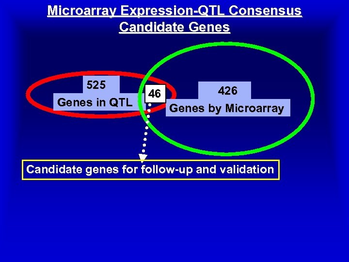 Microarray Expression-QTL Consensus Candidate Genes 525 Genes in QTL 46 426 Genes by Microarray