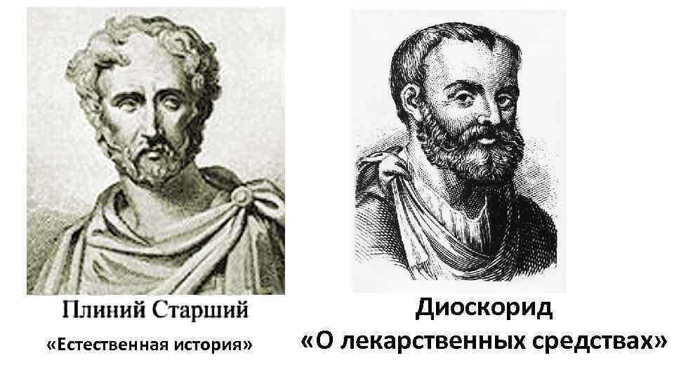 «Естественная история» Диоскорид «О лекарственных средствах»