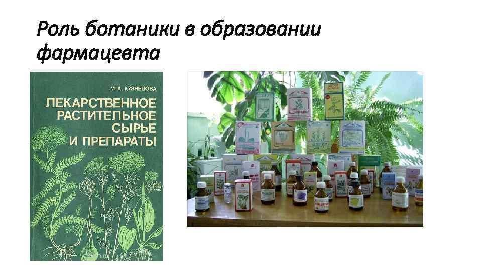 Роль ботаники в образовании фармацевта
