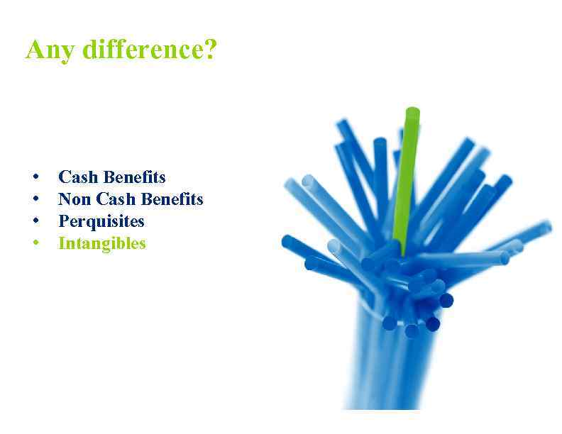 Any difference? • • Cash Benefits Non Cash Benefits Perquisites Intangibles