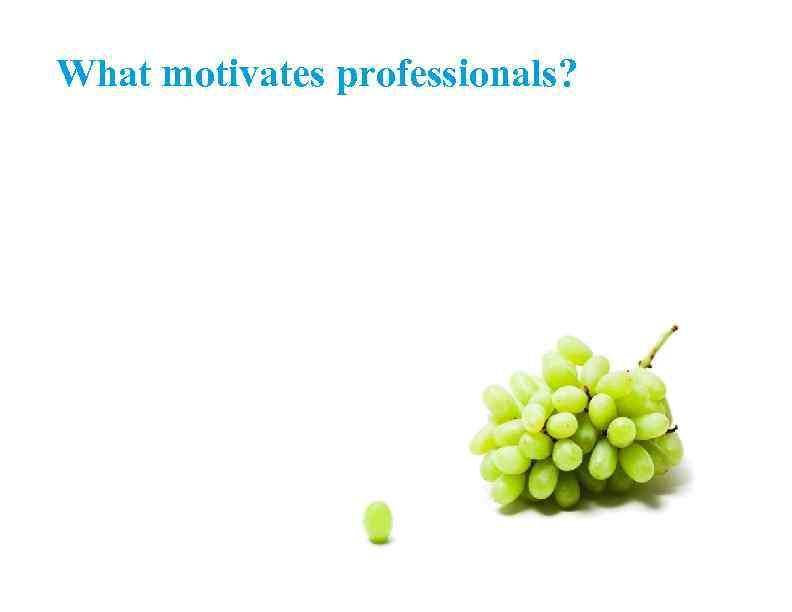 What motivates professionals?
