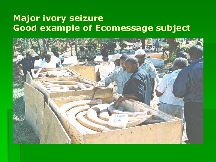Major ivory seizure Good example of Ecomessage subject
