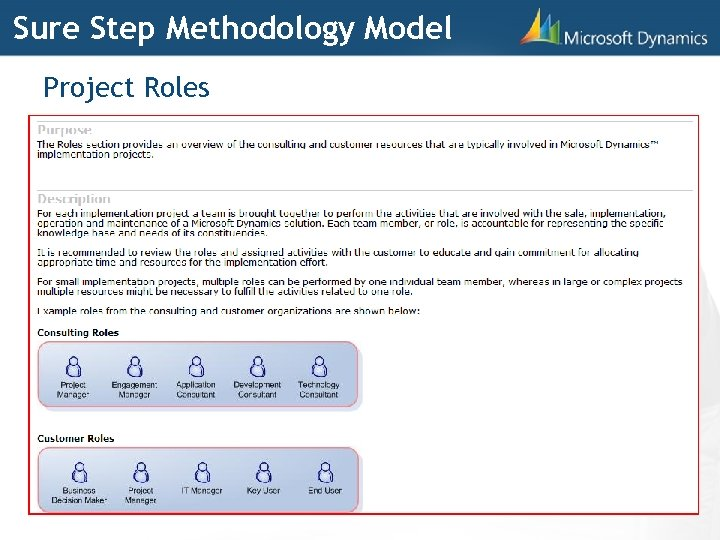 Sure Step Methodology Model Project Roles