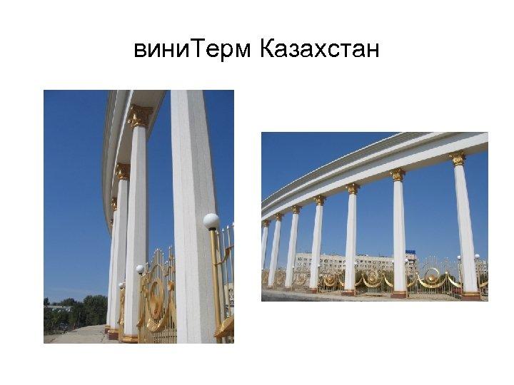 вини. Терм Казахстан