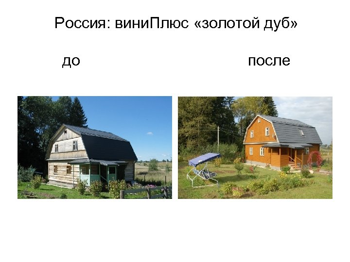 Россия: вини. Плюс «золотой дуб» до после