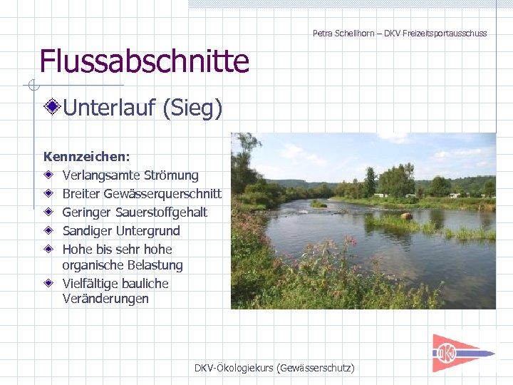 Petra Schellhorn – DKV Freizeitsportausschuss Flussabschnitte Unterlauf (Sieg) Kennzeichen: Verlangsamte Strömung Breiter Gewässerquerschnitt Geringer