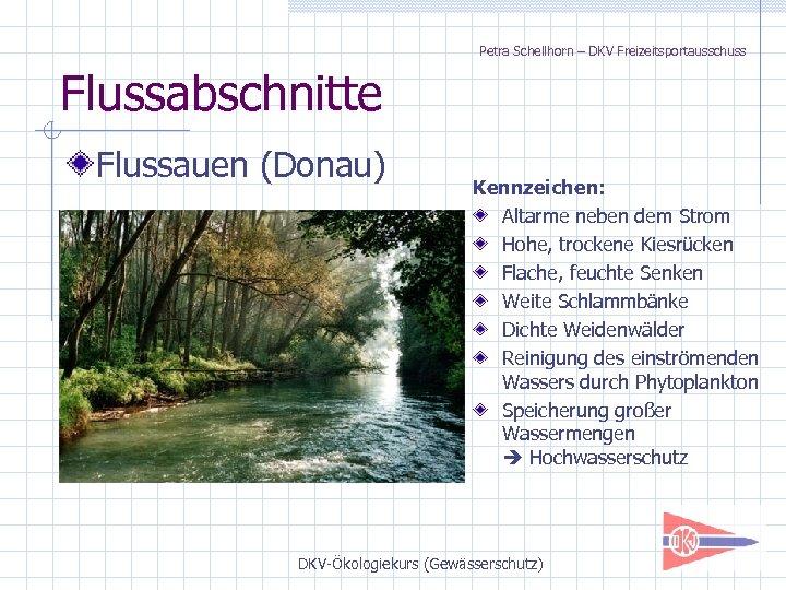 Petra Schellhorn – DKV Freizeitsportausschuss Flussabschnitte Flussauen (Donau) Kennzeichen: Altarme neben dem Strom Hohe,