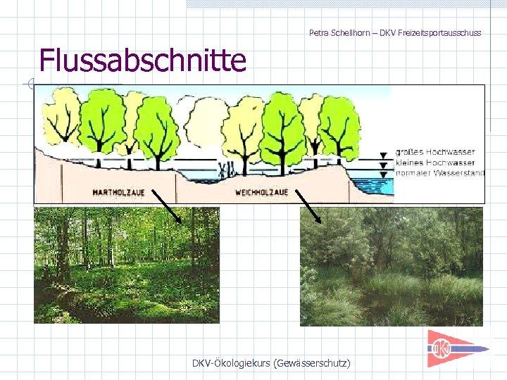 Petra Schellhorn – DKV Freizeitsportausschuss Flussabschnitte DKV-Ökologiekurs (Gewässerschutz)