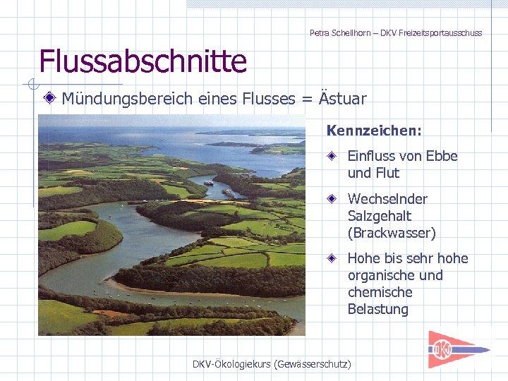 Petra Schellhorn – DKV Freizeitsportausschuss Flussabschnitte Mündungsbereich eines Flusses = Ästuar Kennzeichen: Einfluss von