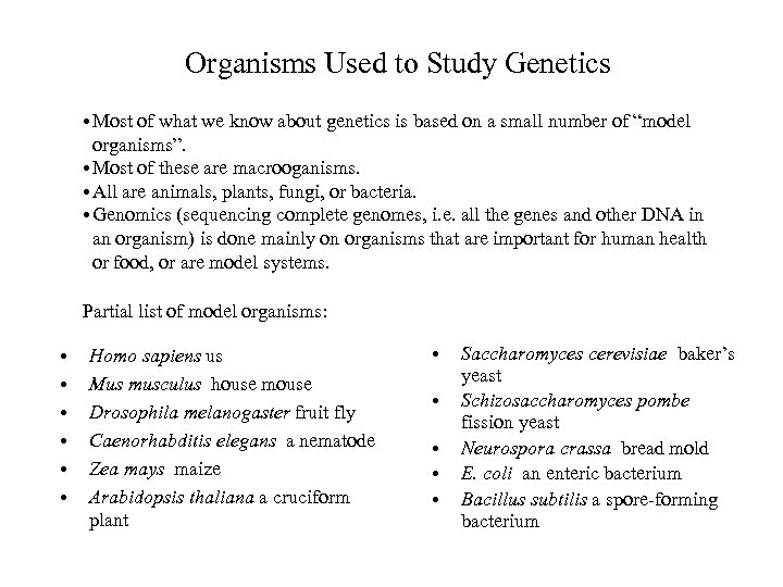 Organisms Used to Study Genetics • Most of what we know about genetics is