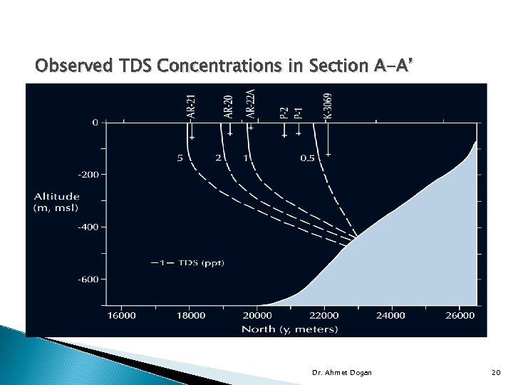 Observed TDS Concentrations in Section A-A' Dr. Ahmet Dogan 20
