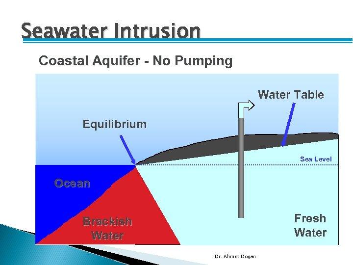 Seawater Intrusion Coastal Aquifer - No Pumping Water Table Equilibrium Sea Level Ocean Fresh