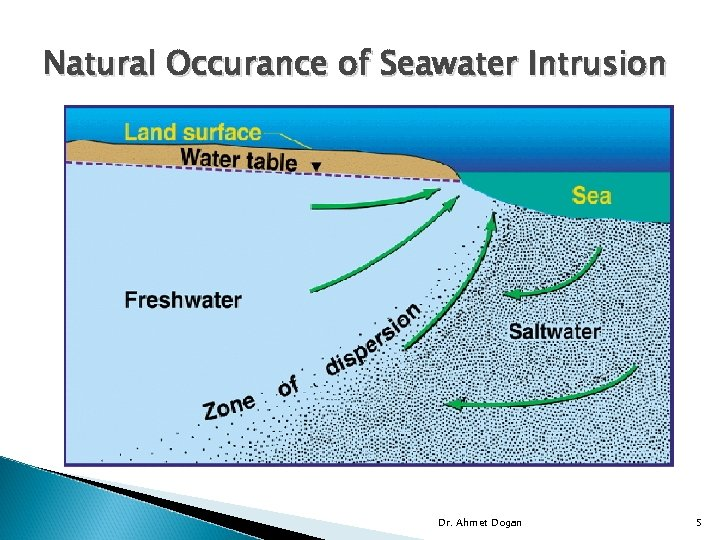Natural Occurance of Seawater Intrusion Dr. Ahmet Dogan 5