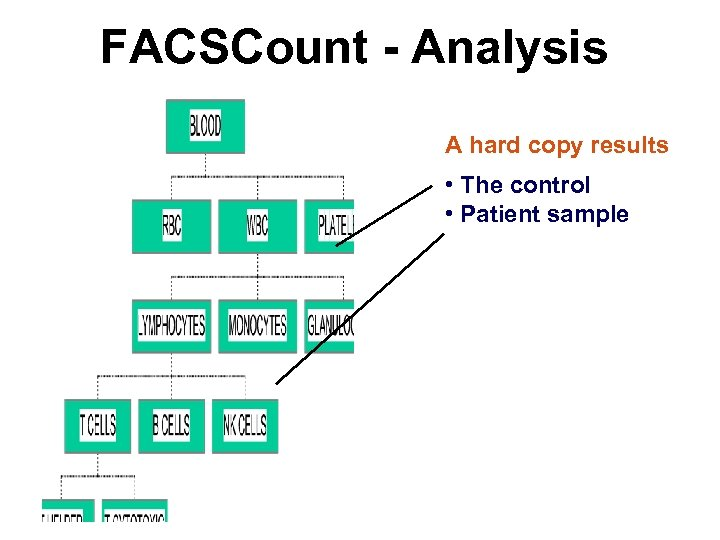 FACSCount - Analysis A hard copy results • The control • Patient sample