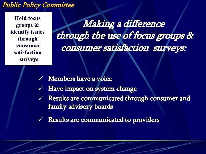 Public Policy Committee Hold focus groups & identify issues through consumer satisfaction surveys Making